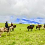 コハラ山乗馬 草原コース