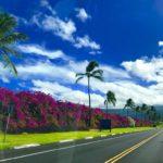 ハワイ島 貸切 コナ空港送迎 & プチ観光