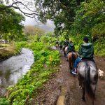 ワイピオ渓谷乗馬ツアー