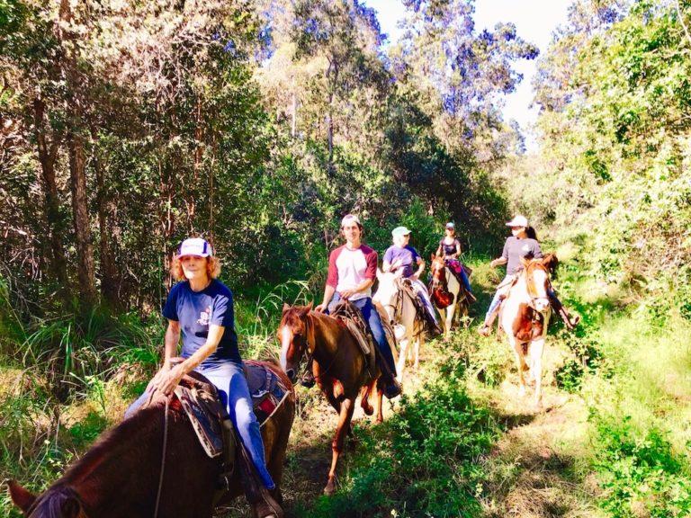 コナ乗馬ツアー カイルアコナタウン散策付き